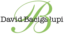 David Bacigalupi